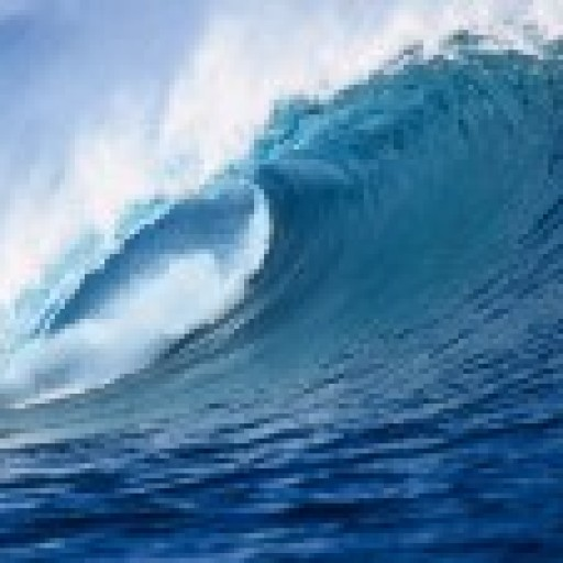 Nasze morza i oceany
