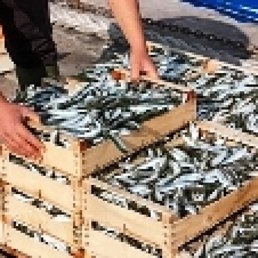 Rybołówstwo nadal ze wsparciem UE
