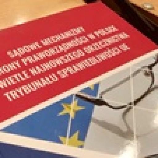 Praworządność oczami polskich prawników