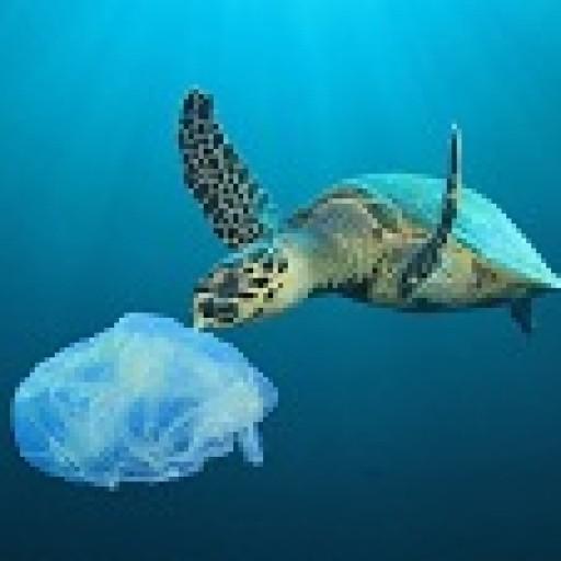 Plastikowi mówimy kategoryczne NIE!